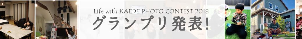 PHOTO CONTEST 2018